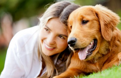 dog-family-portrait