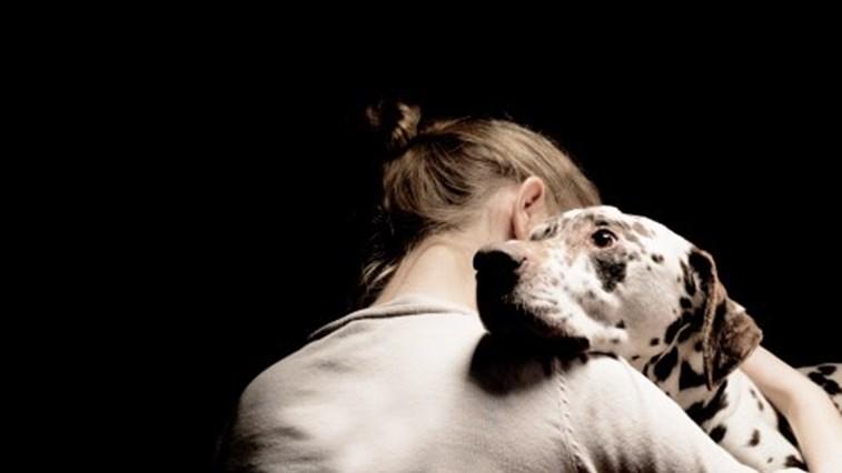 dona e cão