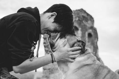 ajuda animal