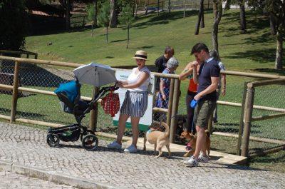 Fonte: parque canino